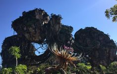 Pandora, o mundo de Avatar no Disney's Animal Kingdom  – Orlando