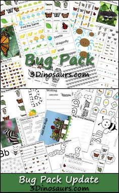 Free Bug Pack! Over 110 pages for ages 2 to 7. - 3Dinosaurs.com