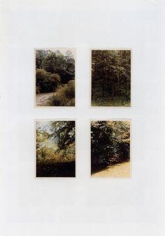 cinoh: Gerhard Richter WaldForest 1969 51.7 cm x 36.7 cm Atlas...