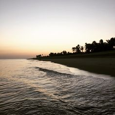 "@cabarletta's photo: ""Good bye 2014 #lastworkout #jog #buenaventura #panama #beachtime #theway #backyard @buenaventuraresort"""