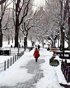 NYC Central Park, Snow