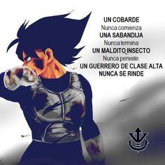 Kid Vegeta, Vegeta And Bulma, Dbz Gt, Broly Movie, Dragon Ball Gt, Anime Comics, Anime Art, Batman, Scarlet