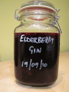 Elderberry Gin - now is the season to collect Elderberrys https://jamesbonfieldrecipes.wordpress.com/2010/09/24/elderberry-gin/