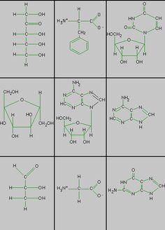 hydrocarbon nomenclature naming hydrocarbons practice worksheet answers organic chem. Black Bedroom Furniture Sets. Home Design Ideas