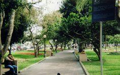 Parque de gato de Lima Parque Kennedy - Parque Central de Miraflores,