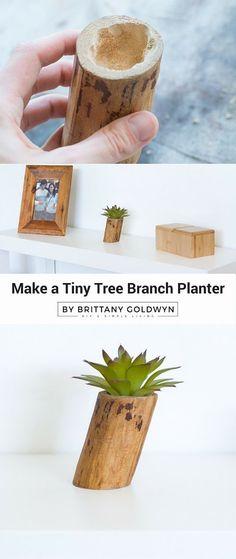 Make a Tiny Tree Bra