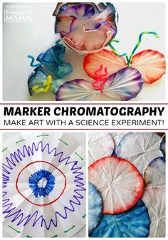 Marker Chromatography Science Experiment for Kids - Combining Art and Science at B-Inspired Mama - steam crafts - kids crafts - coffee filter crafts - teacher ideas - classroom ideas Science Week, Preschool Science, Science Fair, Science For Kids, Art For Kids, Summer Science, Science Table, Easy Science, Kids Fun