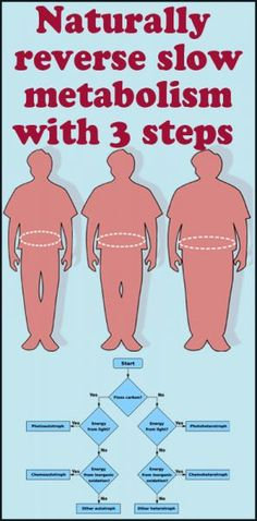 Home remedy for reverse slow metabolism with 3 steps shown in the figure. Don't give up if you have a slow metabolism system, there are many natural ways to reverse it. But we may discuss only 3 p… Fitness Diet, Health Fitness, Body Fitness, Slow Metabolism, Fat Loss Diet, Healthy Lifestyle Tips, Medical Advice, Alternative Health, I Work Out