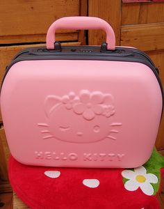 we finally got it - the Hello Kitty beauty case  my comments that liquids are no longer allowed on airplanes were considered useless