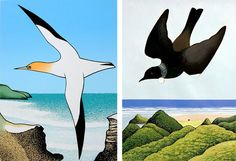 New Zealand artist Don Binney is famous for his series of paintings and drawings of birds and landscape. Stylised, graphic paintings, Don Binney seamlessly integrates the bird with the landscape, carefully echoing shapes and balancing forms.