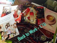 Back to work com Catálogo 16