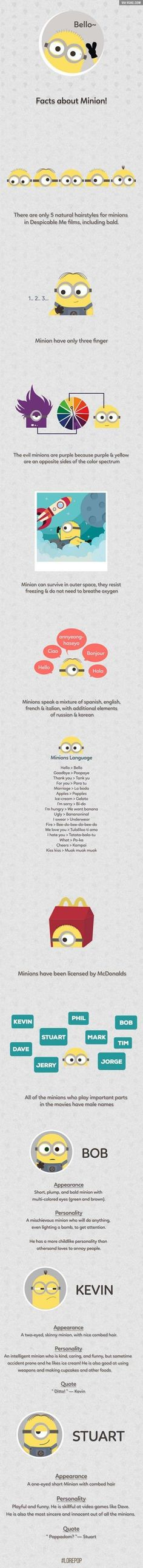 Brush up on your Minion knowledge this weekend with this awesome infographic!. #minions #infographic #knowledge