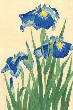 Japanese art, Flowers floral plants botanical art prints, posters, Japanese Irises FINE ART PRINT, japan flowers woodblock prints, paintings