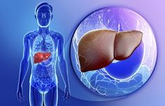As mentioned in the name it is a chronic disease which affects the liver disabling it from its functions. Here the disease affects the normal cells in the liver Liver Cancer, Liver Disease, High Liver Enzymes, Blood Test Results, Le Psoriasis, Health Options, Health Tips, Health Facts, Gut Health