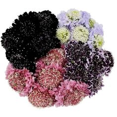 Shop Sam's Club for big savings on Instant Savings Book Floral Bouquets, Wedding Bouquets, Wedding Flowers, Bulk Flowers Online, Mini Carnations, White Carnation, Green Garland, Cheap Flowers, Pink And Blue Flowers