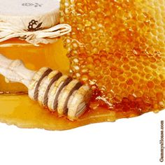 Natural Rooting Hormone...raw honey is a good substitute for rooting hormone powder.