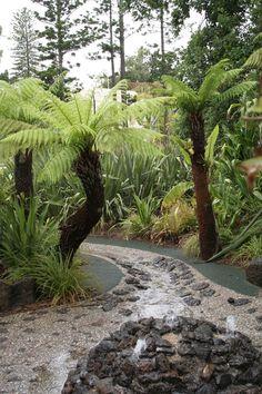 Photo Gallery - Schools and Children's Gardens - Laidlaw & Laidlaw Design Landscape Architects