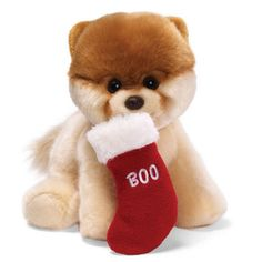 Mike's Christmas gift for sure lol.Gund Plush Toy, Christmas Boo Dog - Holiday Decor - Holiday Lane - Macy's Bridal and Wedding Registry Boo The Cutest Dog, World Cutest Dog, Plush Animals, Cute Animals, Stuffed Animals, Stuffed Toys, Ios, Hamster, Getting A Puppy