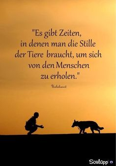 Oh ja . Dog Quotes, Words Quotes, Best Quotes, Life Quotes, Sayings, German Quotes, German Words, Perfect Word, True Words