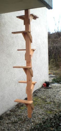 cat ladder to get to second story balcony or deck