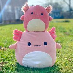 """Squishmallows Plush 12/"""" 12 inch Archie Axolotl HTF Rare NWT Squishmallow"""