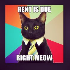 Rent is due don't let them nasty late fees get attached!
