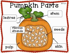 Pumpkin Patch CCSS Math, Science, & ELA Centers and Activities for Kindergarten. Fall Preschool, Preschool Science, Preschool Cooking, Autumn Activities, Halloween Activities, Halloween Science, Stem Activities, Fall Halloween, Halloween Party