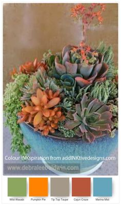 Colour Combo Ideas for Paper Succulents – addinktive designs