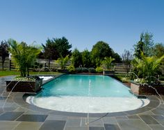 Award Winning Custom Inground Swimming Pools in NJ, - Caribbean Blue Pools & Spas Pool Spa, My Pool, Beach Pool, Outdoor Pool, Outdoor Ideas, Outdoor Spaces, Olympic Size Pool, Swimming Pools, Lap Pools