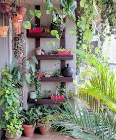 Ein Balkongarten in Mumbai: Terrace Reveal - Balcony garden - Terrasse Indoor Balcony, Small Balcony Garden, Small Balcony Decor, Balcony Plants, Terrace Garden, Brick Garden, Balcony Gardening, Terrace Ideas, Patio Plants