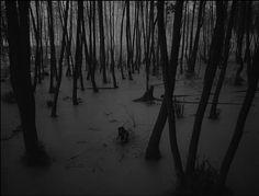 Ivans Childhood by Andrei Tarkovsky