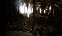 Foresta Lumina: multisensorische Installation im Wald - wenn Märchen & Geschichten real werden