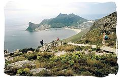 View of Houtbay, hiking in the Cape Peninsula is a truly rewarding experience - Activity Attractions in Cape Town South Africa and the Cape Peninsula