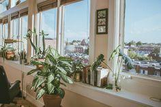 Instagram, Park, Plants, Parks, Plant, Planets