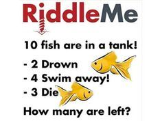12 Impossibly Difficult Riddles That Will Confuse You! | PlayBuzz I got 11 out 12 Impossible Riddles With Answers, Tricky Riddles With Answers, Riddles To Solve, 10 Riddles, Challenging Riddles, Funny Jokes And Riddles, Brain Teasers Riddles, Brain Teasers For Kids, Challenges