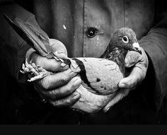 AdictaMente: Fotografía inspiradora