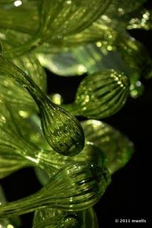 Chihuly green - Chihuly glass gives me goosepimples!