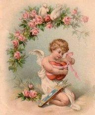 Rose cherub