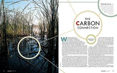 Magazine Layout | The Carbon Connection | Opening two-page spread for an article on – deep breath – carbon sequestration (Google it). Typefaces from the Futura family were used in the headline.