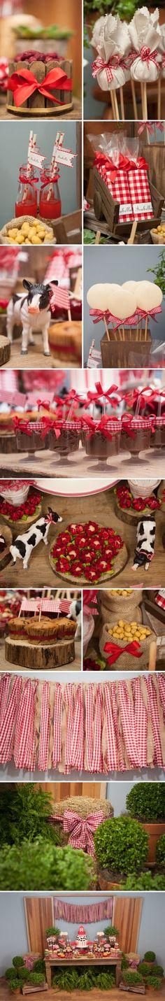 Mais detalhes da festa fazenda