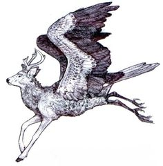 """librum-prodigiosum: """" The Peryton is a creature first written about by Jorge Luis Borges in his Book of Imaginary Beings. It is said to have the head and forelegs of a stag, and the wings and..."""