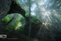 The Gate by hipydeus  bavaria enchanted forest gate mist mystica rocks sun rays trees The Gate hipydeus