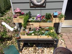 Repurposed coffee table and old door jams turned fairy garden.