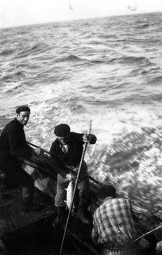 Pesca do bonito