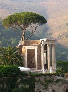 Temple of Vesta - this is an early temple in the first century. It's architecture helps provide a feel and an obvious identification.