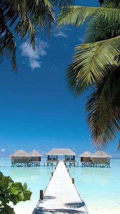 Rangali Island, Maldives - I can just see it. . .friends and family filling surrounding cabins with party central in the middle! I love tropical beach locations!