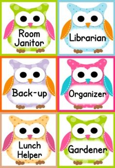Owl Themed Classroom Materials