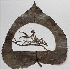 Tudo um Pouco: A Arte nas Folhas.