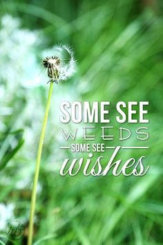 Always see wishes:)