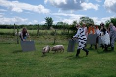 Getting into the farm mood means we have all animals in a field together! Maybe that's what farming is these days? Party Activities, Outdoor Fun, Farm Animals, Farming, Hilarious, Mood, Adventure, Birthday, Character